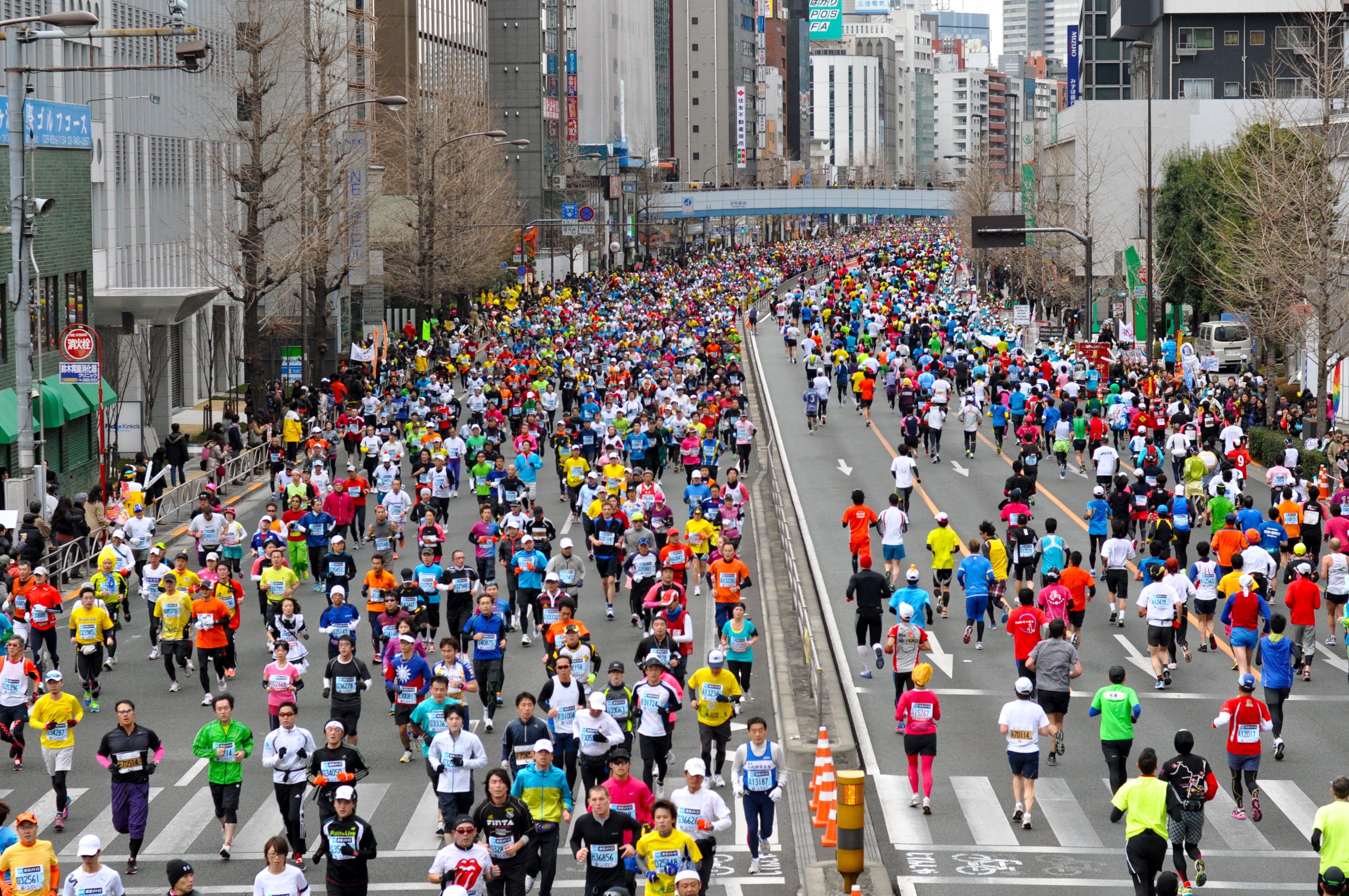 東京マラソン  |日本テレビ